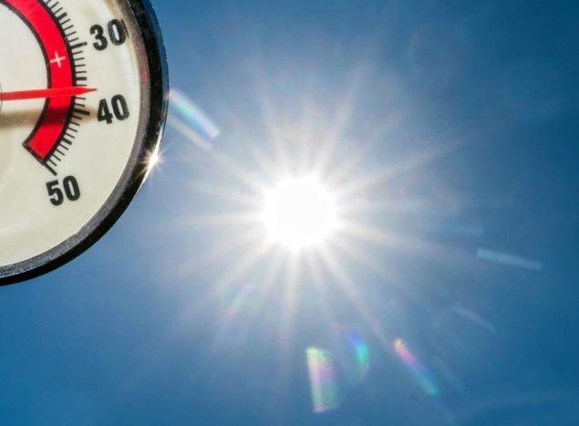 В полуденное солнце, термометр показывает 37 градусов по Цельсию в саду в Sieversdorf, Германия, 4 июля 2015 года (EPA / Патрик PLEUL)