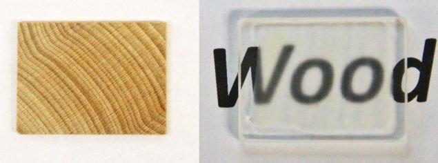 Вчені зробили деревину прозорішою ніж скло