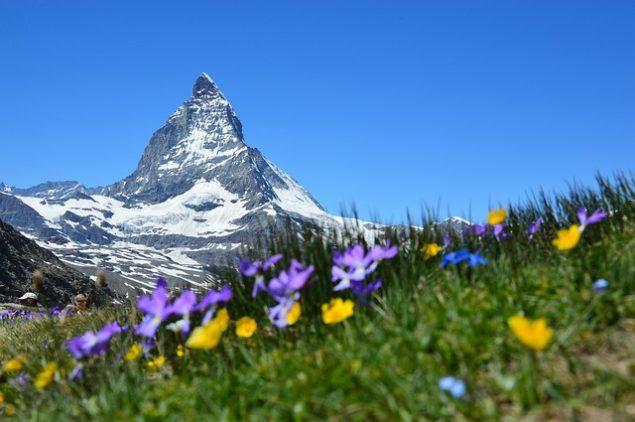 Швейцарія голосує за припинення ядерної енергетики