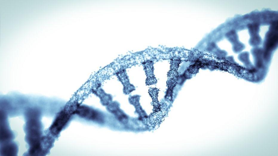 Науковий прорив? Експерти знаходять спосіб обернути старіння