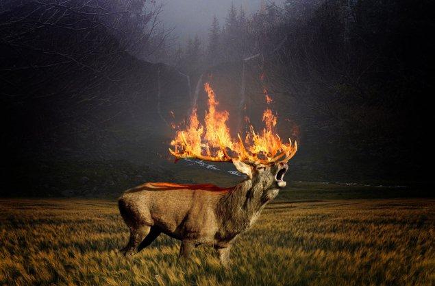 Пожары Россия