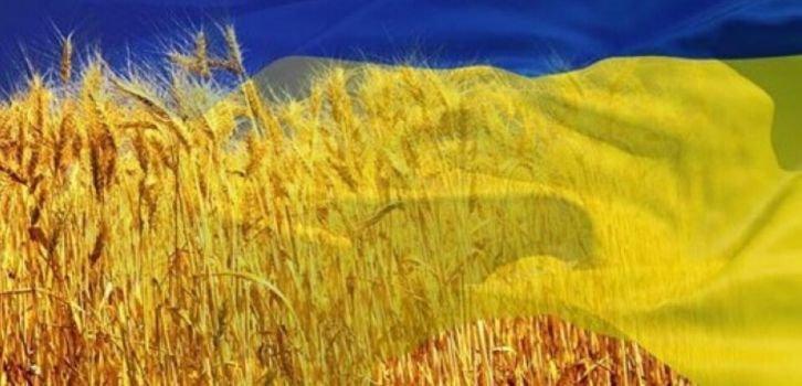 Опитування: Мова об'єднує українців, а не розділяє - Демініціативи
