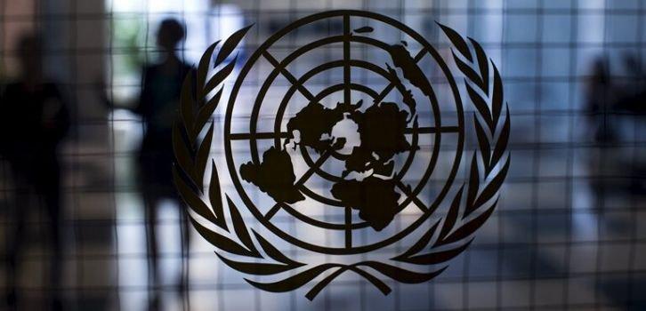 Для чего козе баян. Почему Кремль созвал заседание Совбеза ООН