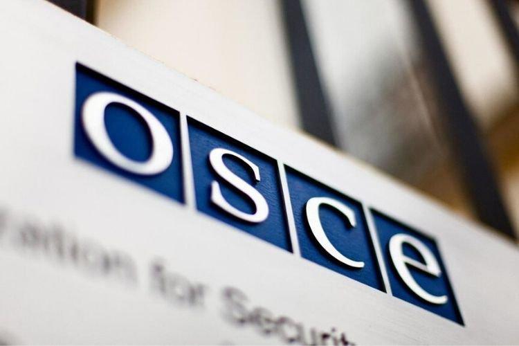 Єгор Божок: «Росія – найбільше джерело мінної загрози не тільки для України, але й всього простору ОБСЄ»
