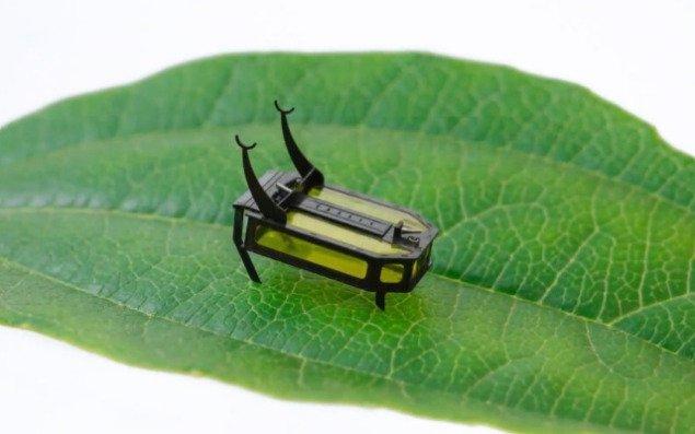 Мініатюрний робот-жук подорожує дві години без батареї