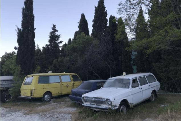 Гэбовирус. Почему из Крыма разбегается население?