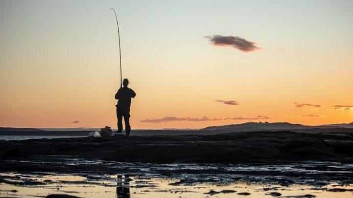 Что происходит с морским рыболовством в оккупированном Крыму