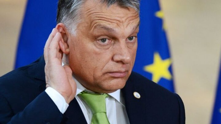 Пытаясь вставить палки в колеса ЕС, Орбан вырыл себе яму