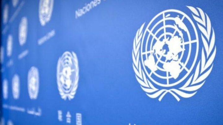 Украина поднялась на 29 позиций в рейтинге индекса электронного участия ООН
