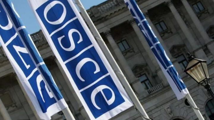 В ОБСЕ рассказали о поддержке «Крымской платформы»