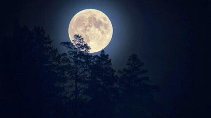 Россию выгнали из международной лунной программы