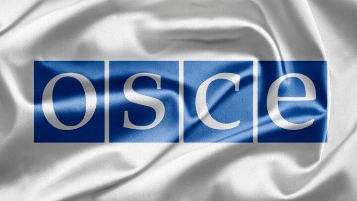 ОБСЕ возглавила дружественная Украине представительница Швеции