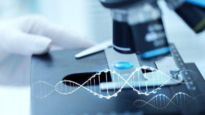 Элизиум уже сегодня. Новая эпоха медицины в развитом мире. Эксклюзив