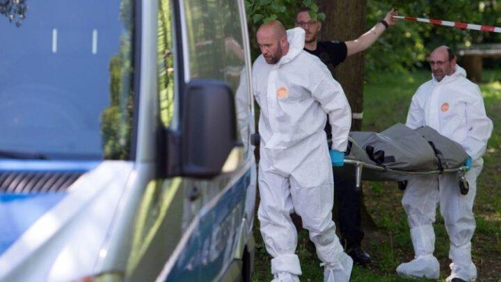 Bellingcat: получены новые доказательства об убийстве Хангошвили