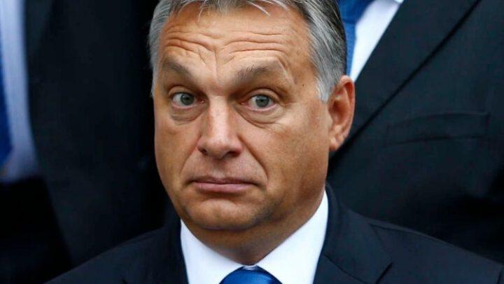 Вышеградская группа. Ответ Кремлю. Орбан смягчает тон. Эксклюзив