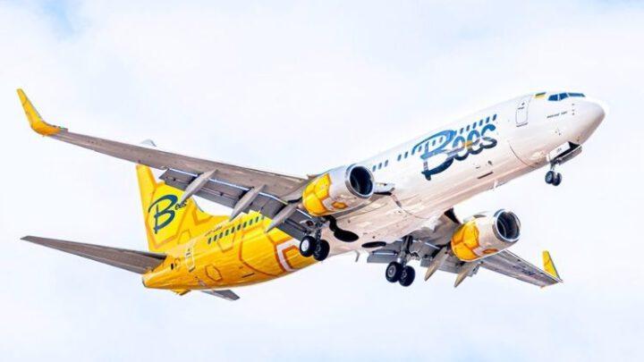 Украинский Bees Airline открыл продажи на первые маршруты