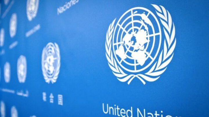 В ООН займутся связями оккупантов и «друзей Крыма» с торговлей детьми