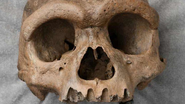 Массивная человеческая голова в Китае заставляет ученых переосмыслить эволюцию