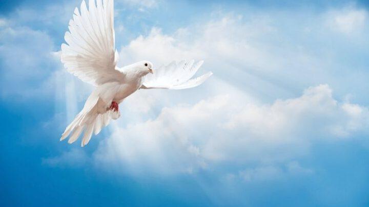 Про шанування святих та святих ПЦУ. Ексклюзив