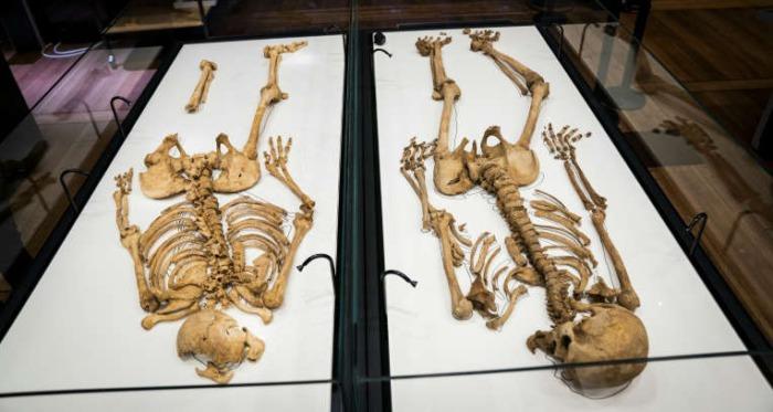 Два захоронения викингов, разделенных океаном, содержат близких родственников