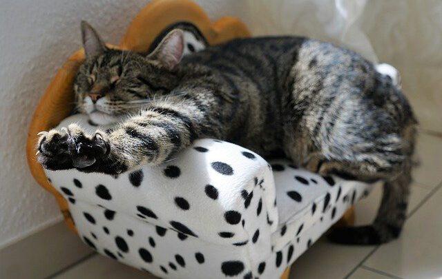 7 видов отдыха и как их получить