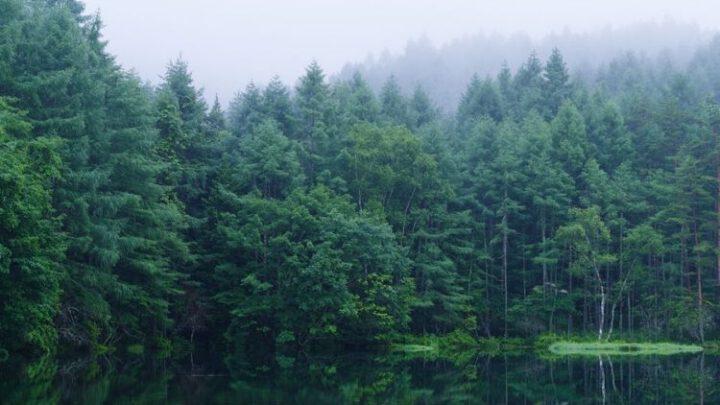 «Метинвест» сотрудничает с австрийским центром К1-МЕТ для уменьшения углеродного следа