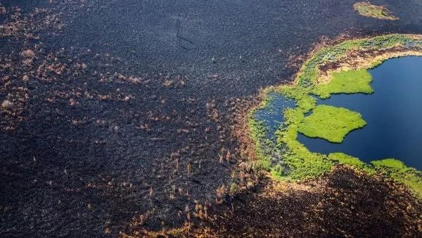 Сибирские пожары затмевают все остальные на Земле вместе взятые