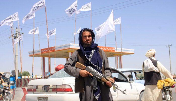 Почему обученная в США Афганская национальная армия с легкостью потерпела поражение от талибов