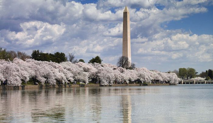Свято Вашингтона-міста: прелюдія у віршах